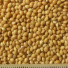 thumb_ce-millet-yellow2