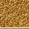 thumb_oi-flax-oil-gold2