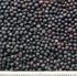 thumb_oi-rapeseeds2