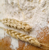 thumb_fo-flour-wheat2